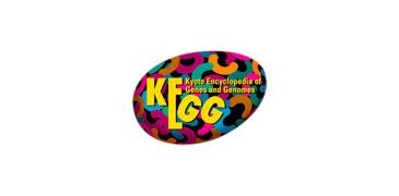 kegg128